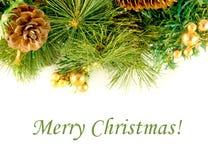 Kerstkaart. Tak van een bont-boom en sparappel Stock Foto