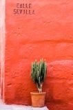 Kerstman Catalina Convent, Arequipa, Peru Stock Afbeeldingen