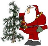 Kerstman die een Boom Scraggly houden stock illustratie