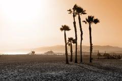 Kerstman Monica Beach Palms royalty-vrije stock fotografie