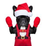 Kerstman selfie hond Stock Fotografie