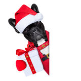 Kerstmanhond Stock Fotografie