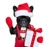 Kerstmanhond Stock Foto