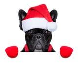 Kerstmanhond Royalty-vrije Stock Afbeeldingen