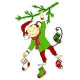 Kerstmis Aap het hangen op Kerstmis-boom en het houden van chr vier Stock Afbeelding