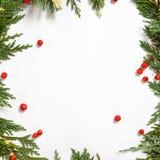 Kerstmis achtergrondgrens met altijdgroene spar Royalty-vrije Stock Foto