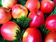 Kerstmis appelen royalty-vrije stock fotografie