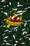 Kerstmis Apple en Sneeuw Stock Foto's