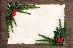 Kerstmis Bloemengrens Stock Foto
