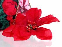 Kerstmis: De kunstmatige Bloei van Poinsettia stock afbeeldingen