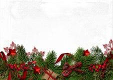 Kerstmis decoratieve grens met spartakken en rode bessen  Stock Fotografie