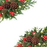 Kerstmis en de Wintergrens Stock Afbeeldingen