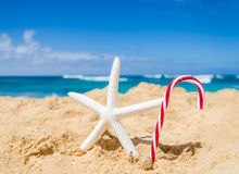 Kerstmis en Gelukkige Nieuwjaarachtergrond op het tropische strand Stock Afbeelding