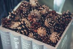 Kerstmis en het Nieuwjaar verfraaiden dicht omhoog Houten doos met pijnboom Royalty-vrije Stock Afbeeldingen