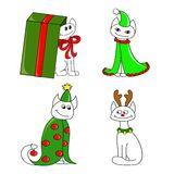 Kerstmis en nieuwe jaarkatten Royalty-vrije Stock Foto