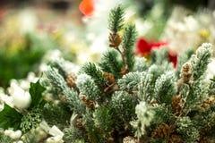 Kerstmis en Nieuwjaar de decoratie dichte omhooggaand van de pijnboomboom Stock Foto's