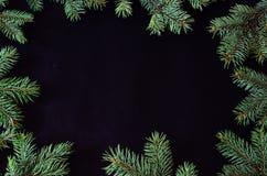Kerstmis en Nieuwjaarachtergrond met het nette kader van boombrunches en exemplaarruimte Royalty-vrije Stock Foto