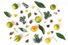Kerstmis gestileerde samenstelling De mandarijncitrusvruchten en de bladeren, spar vertakken zich, anijsplantsterren, hulstbessen stock foto