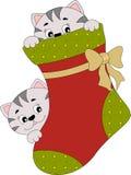 Kerstmis gluurt een Boe-geroep Stock Afbeelding