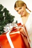 Kerstmis Gril Royalty-vrije Stock Fotografie