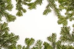 Kerstmis groen die kader op witte achtergrond wordt geïsoleerd Exemplaarkuuroord stock afbeeldingen