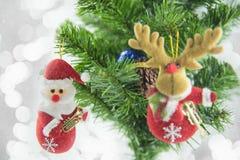 Kerstmis het huidige santa hangen op pijnboomboom Vrolijke Kerstmis en Gelukkig Nieuwjaar Stock Fotografie