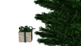 Kerstmis huidige doos met pijnboomboom stock foto's