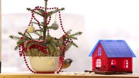 Kerstmis met de mezen stock footage