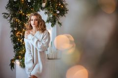 Kerstmis Mooie Glimlachende Vrouw stock afbeeldingen