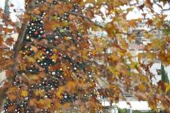 Kerstmis in Nazareth Royalty-vrije Stock Foto's