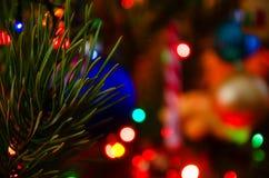 Kerstmis, Nieuwjaar, close-up van een Kerstboomtak stock afbeelding