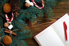 Kerstmis of Nieuwjaar de achtergrond met koekjes, kruiden, kaneel, noten en spar vertakt zich op donkere houten achtergrond Stock Foto
