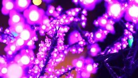Kerstmis, Nieuwjaar, vakantie, verlichting in de vorm van sakurabloesems stock video