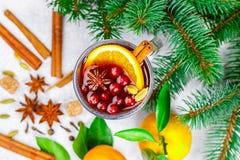 Kerstmis overwoog rode wijn met kaneel, kardemom en steranijsplant royalty-vrije stock foto's