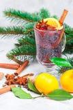 Kerstmis overwoog rode wijn met kaneel, kardemom en steranijsplant stock foto's