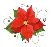 Kerstmis, poinsettia, hulst Royalty-vrije Stock Foto's