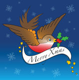 Kerstmis Robin Stock Illustratie