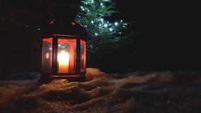 Kerstmis rode gloeiende lantaarn dicht omhoog met altijdgroene boom stock video