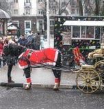 Kerstmis in Rozhdestvenskya een paard stock afbeelding
