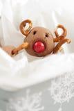 Kerstmis Rudolf Reindeer Cookies Stock Foto's