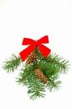 Kerstmis swag Stock Foto's