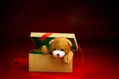 Kerstmis Teddy Popping Out van een Giftdoos Royalty-vrije Stock Foto's