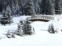 Kerstmis van de cascade Royalty-vrije Stock Foto's