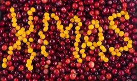 Kerstmis van de vitamine Royalty-vrije Stock Afbeeldingen