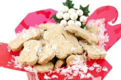 Kerstmis van Doggie stock foto
