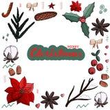 Kerstmis vastgestelde poinsettia, kegel, katoen omela, kaneel, Amerikaanse veenbes, noten, ster, spar, suikergoedriet, boog in de stock illustratie