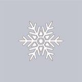 Kerstmis vectorsneeuwvlokken pictogrammen Stock Afbeeldingen