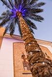 Kerstmis verfraaide palm met lichten en het themamozaïek van Egypte het schilderen stock afbeeldingen