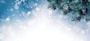 Kerstmisachtergrond met nette takken en kegels met sneeuwfl Royalty-vrije Stock Fotografie