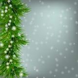 Kerstmisachtergrond met sneeuwvlokken, Kerstmisboom Royalty-vrije Stock Foto's